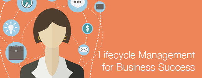 Lifecycle Management for Business Success