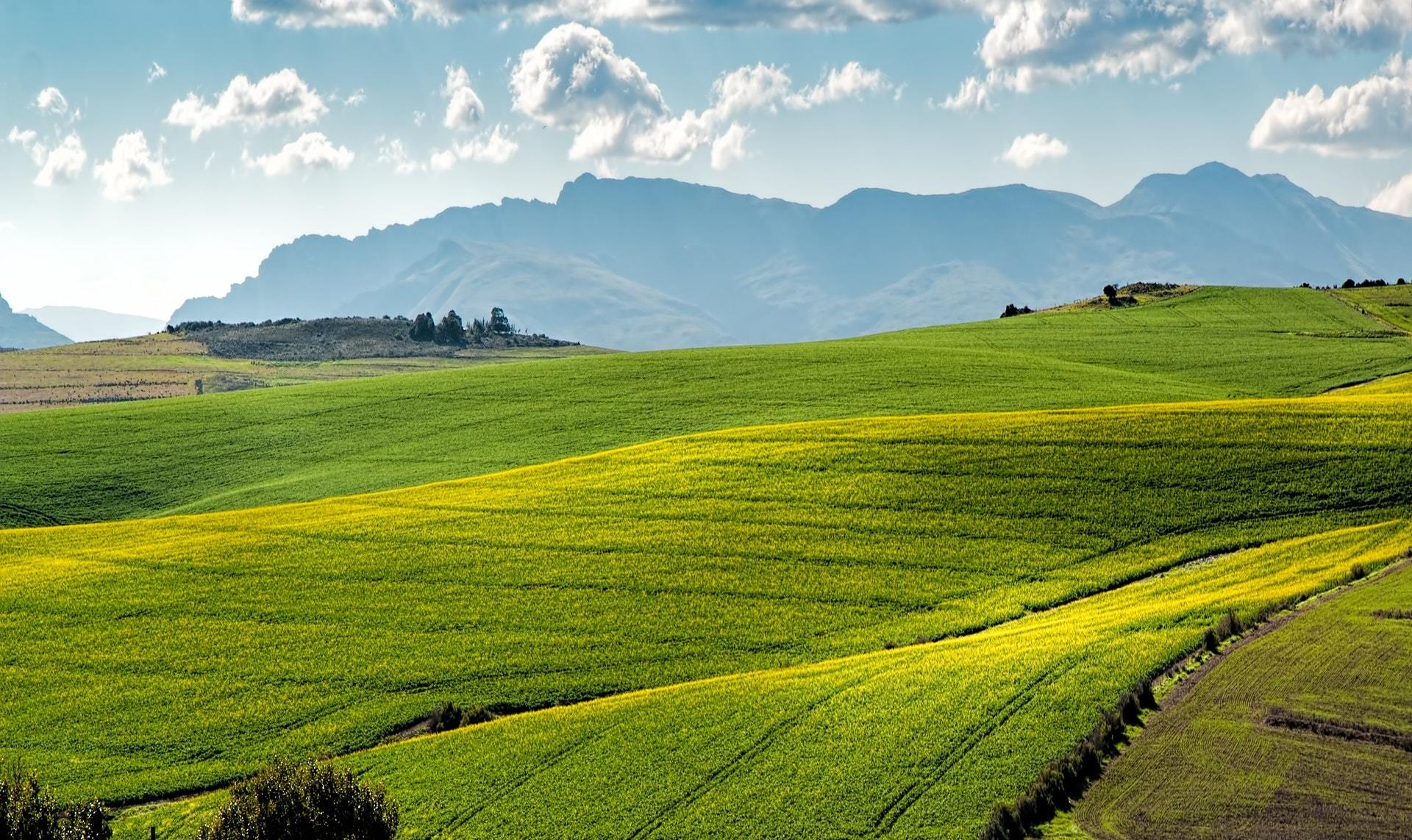 Raw Land Investment