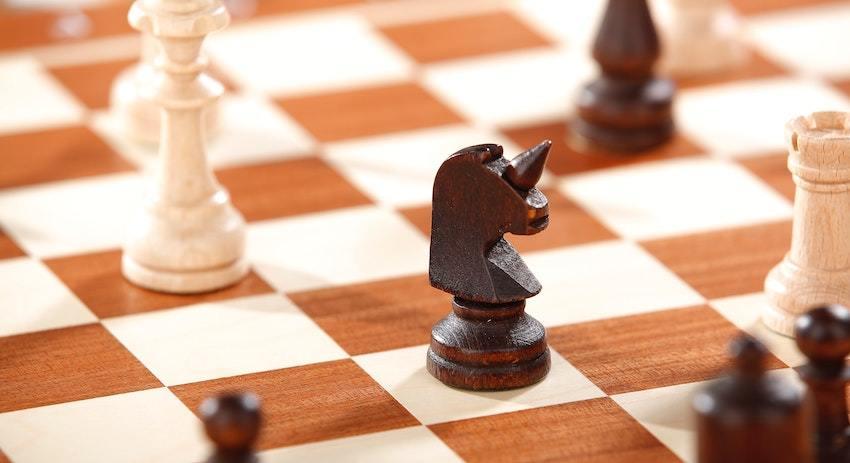 unicorn chess knight, representing unicorn companies