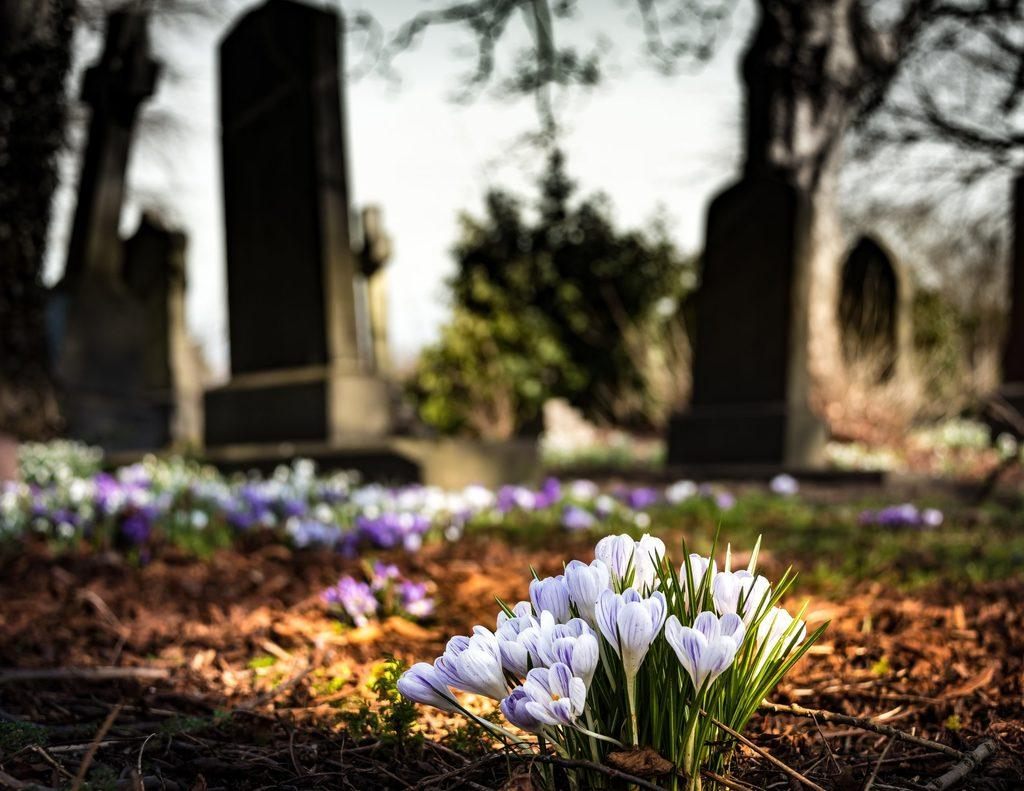 Protecting Your Business in Even of Death