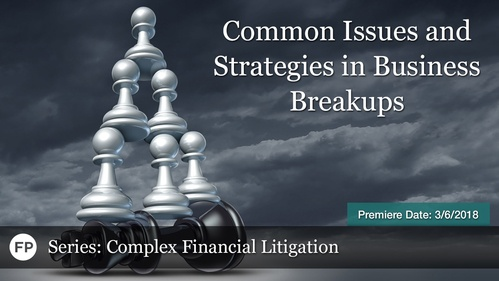 Complex Financial Litigation - Common Issues and Strategies in Business Breakups