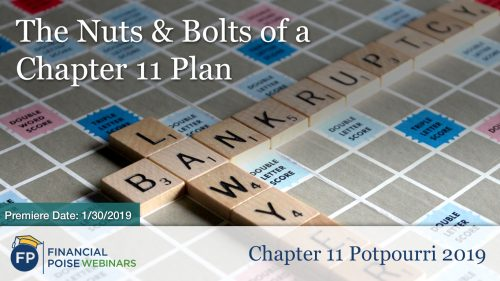 Chapter 11 Potpourri - Nuts and Bolts of a Chapter 11 Plan