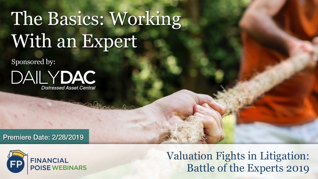 Valuation Fights in Litigation - Working with Expert