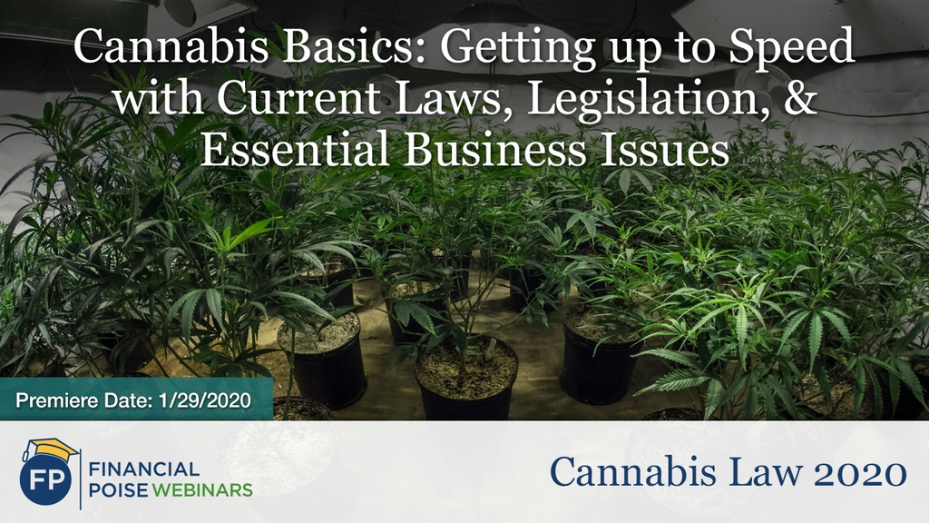 Cannabis Law #1 - Cannabis Basics: Getting up to speed with current laws, legislations and essential business issues