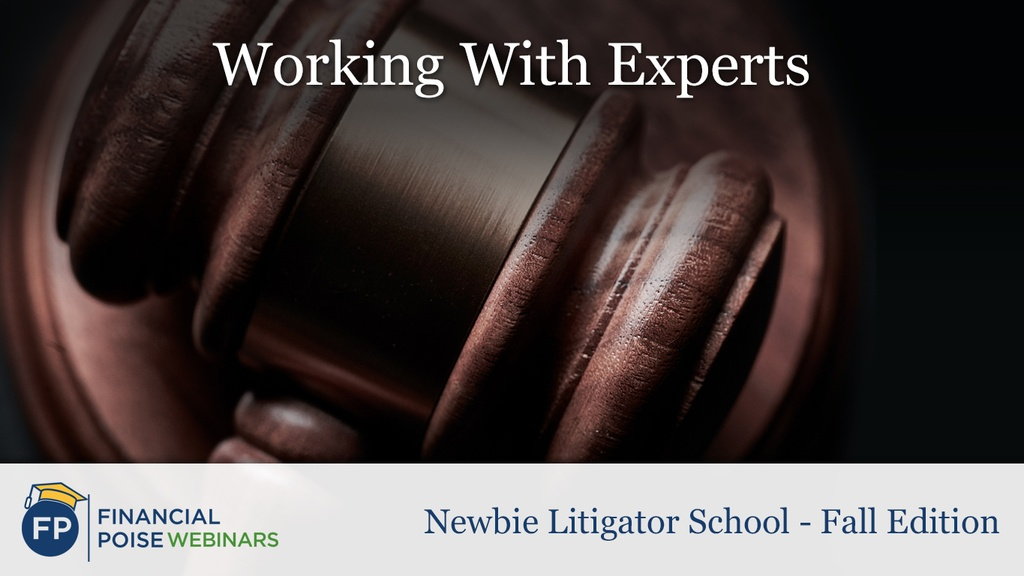 Newbie Litigator School - Working With Experts
