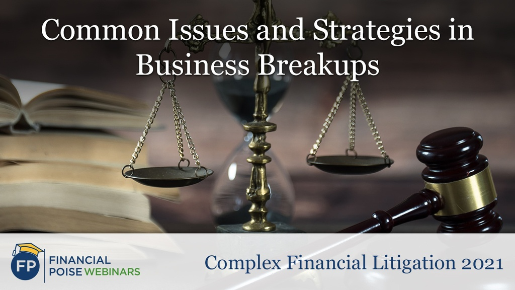Complex Financial Litigation - Common Issues Strategies Business Breakups