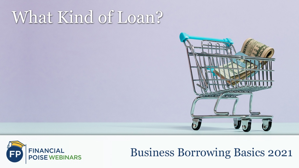 Biz Borrowing Basics - What Kind of Loan